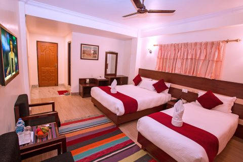 Deluxe-family-room-pic-2
